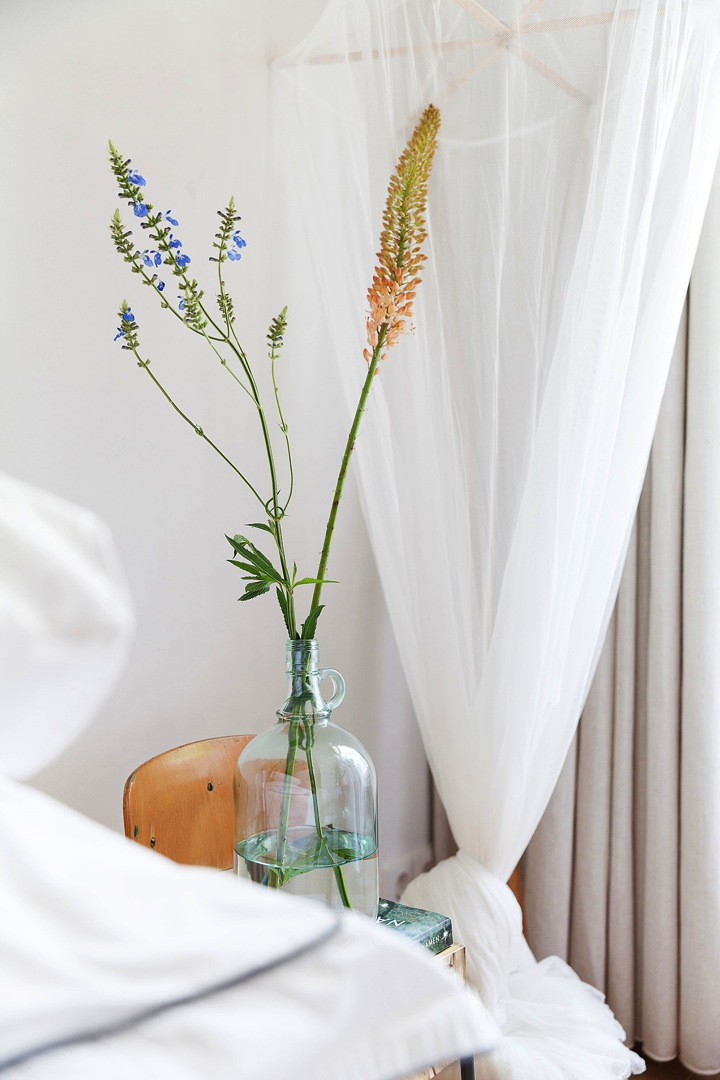 bedside vase and plants