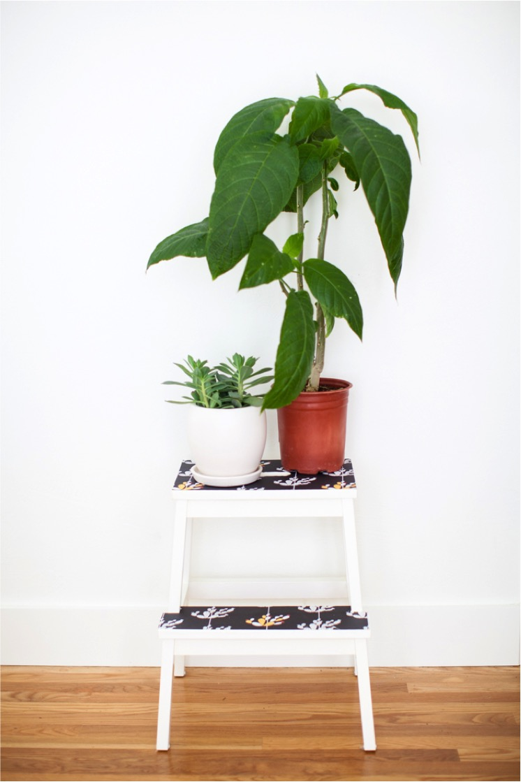 wallpaper stool with cactus print
