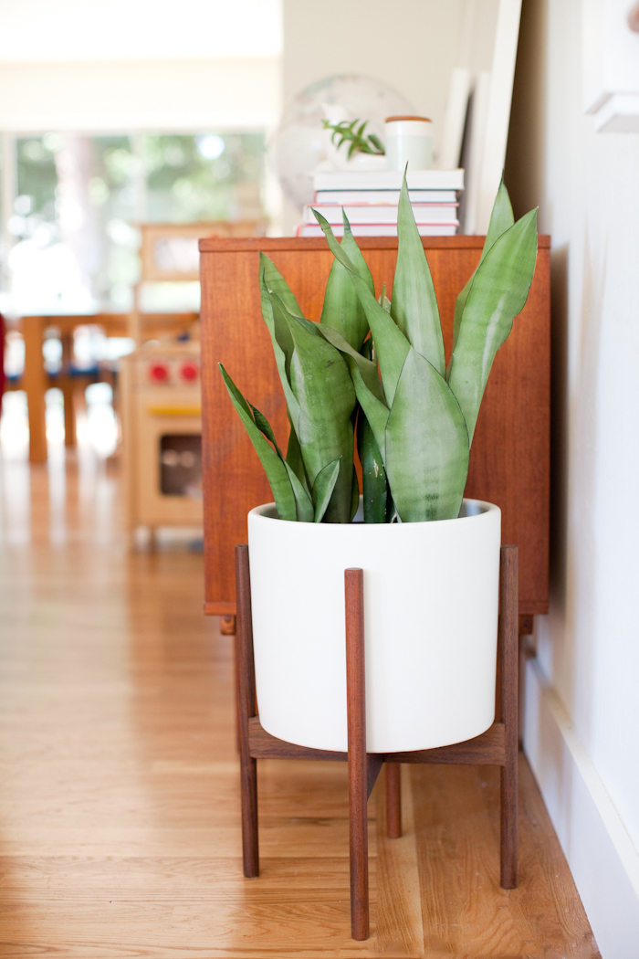 mid century modern planter Giveaway | Mid century modern planter with Modernica | This Little  mid century modern planter